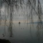 Au bord du lac Léman